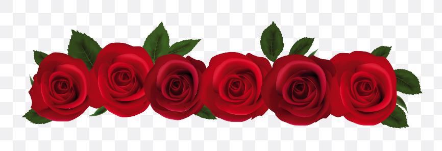 rose border